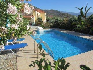 Olive Grove Villa, Panormos