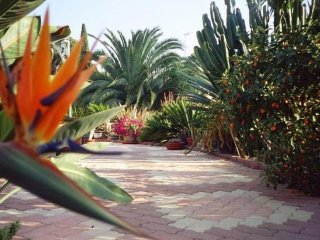 grand espace/clim/vue mer/jardin exceptionel, Carqueiranne