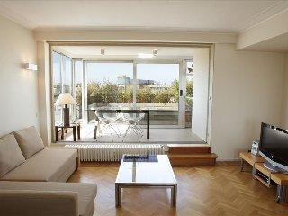 Marvellous penthouse w/terrace