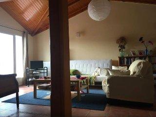 VIsta del salón con sofá cama para dos personas y acceso a la terraza.