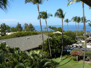 Ocean View, steps to the beach, dining and shops., Kihei