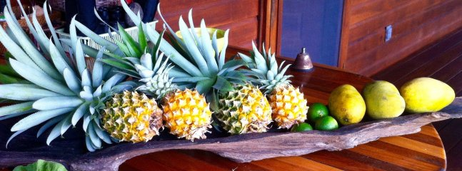 Home-grown and hand-picked fruits right from the trees of Casitas Calinas