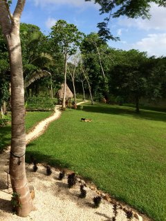 Palapa with hammocks overlooking the river at Casitas Calinas