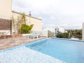 Beautiful Penthouse with Private, Rooftop Pool, Playa Paraíso
