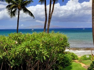 Renovated Beachfront Ocean View, Kihei