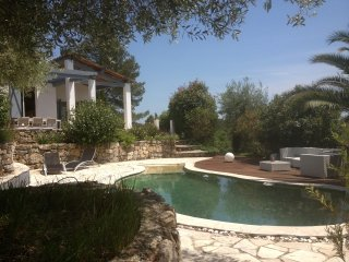Villa Piscine 8p. Disponible en Juillet!, Valbonne