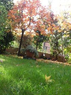 Angolo di giardino