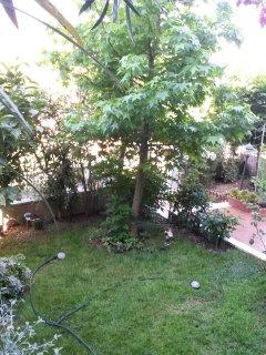 Angolo di giardino.