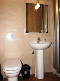 Brand New Bathroom With Shower.