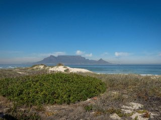 BRAND NEW HOLIDAY APARTMENT / CAR HIRE, Cape Town Central