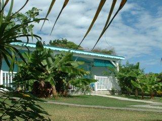 Cocodile Ste Anne Guadeloupe