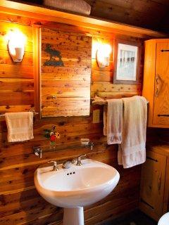 Cedar lined walls, pedestal sink and stereo speaker in the bthroom