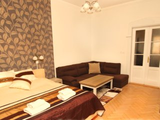 Astra 14 apartment in Nove Mesto with WiFi & lift., Prague