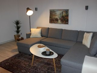 Lovely large bright Copenhagen apartment near parks, Copenhague