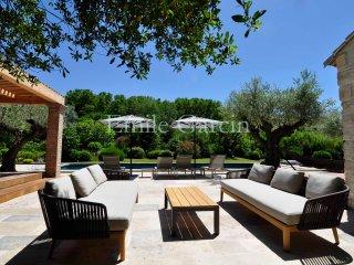 Le Mas Fontanilles - Rental in St Remy de Provence