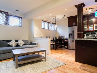 1 Bedroom Luxury Apartment with Private Entrance, Chicago