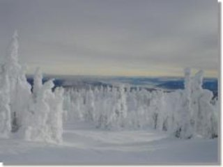 Top of Crystal Chair