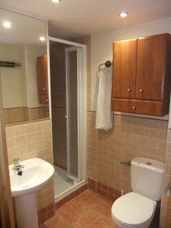 Baño incorporado al dormitorio principal