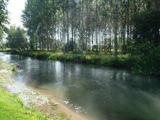 Gîte - Côte d'Opale - à la ferme, rivière, animaux, Berck