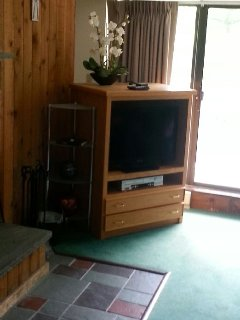 Flat screen TV with VCR
