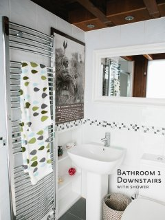 Bathroom Downstairs with shower