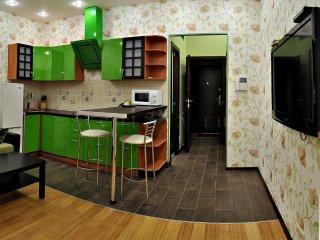 двухкомнатная квартира - студия в центре Москвы, Moscow