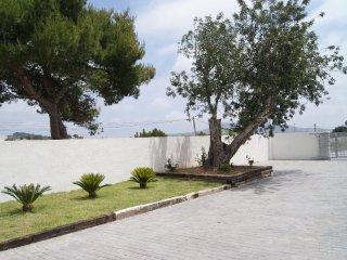 SAN MIQUEL 3000, Moraira