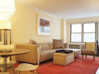 Stunning ap 1 bed 1 bath, New York City