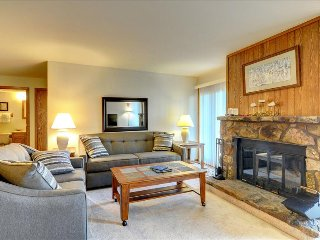 BUFFALO VILLAGE 101: 2 Bed/2 Bath, Sleeps 7, Elevator, Wi-Fi, All of Mother Nature Only Steps Away, Silverthorne