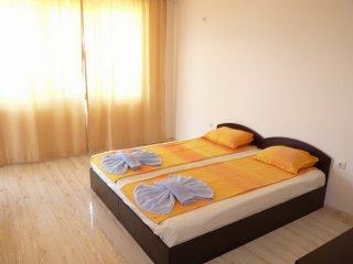 Apartment in Bulgaria #3434, Negotin