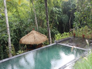 Villa Nita brand new 2 bedrooms Luxury Ubud