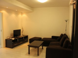 New/Bright nd Cozy 1bdr/1lvr 65sqm apt at Zhenping, Shanghai
