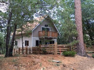 Wolf Road Retreat, Big Bear Region