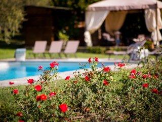 Villa Antico Pino: charming Uliveto Villa Cortona