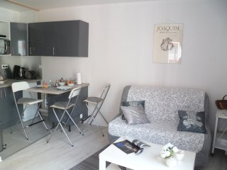 Appartement 'Mulan' T2, parking, centre Toulouse