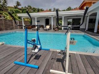 Villa de grand standing, piscine, jacuzzi,fitness, Le Francois