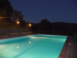 Toscana, alto casentino   ' Geranei '