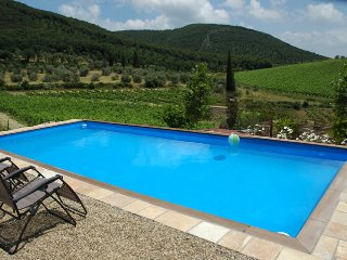 ~Private Farmhouse in Chianti, Exquisite Views~