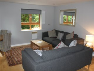 There is plenty of seating plus a dining table in the lounge