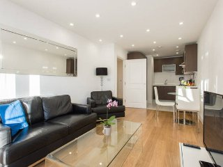 Stunning Central London Apartment with Gym, Londres