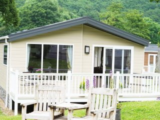 New Quay Lodge  - Woodlands Holiday Park - 413597