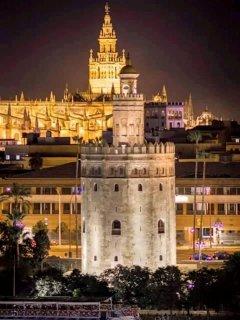 Torre del Oro - Catedral - Giralda.