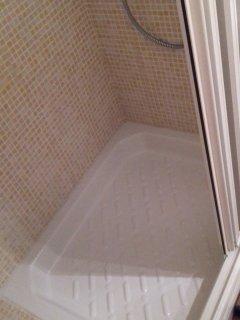 Baño tiene ducha, no bañera.Con mampara.