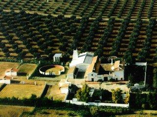 Ranch, Cortijo San Antonio, Antequera