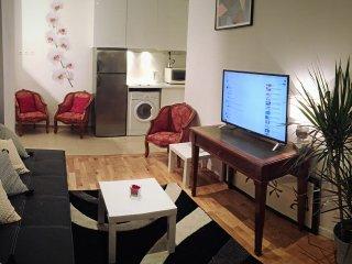 Cool apartment Paris Champs-elysees 50m2