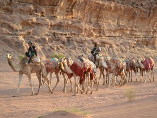 camel tour and many other amazing activities.