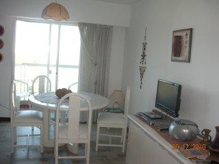 Hermoso, luminoso departamento piso 15 con vista, Punta del Este