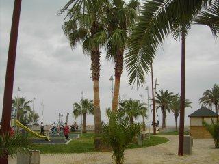 Estudio junto a la Playa.