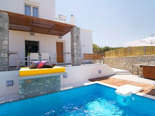 Villa Alexandra - Indoor Jacuzzi - Swimming pool & Playground