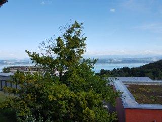 appartement vu des Alpes